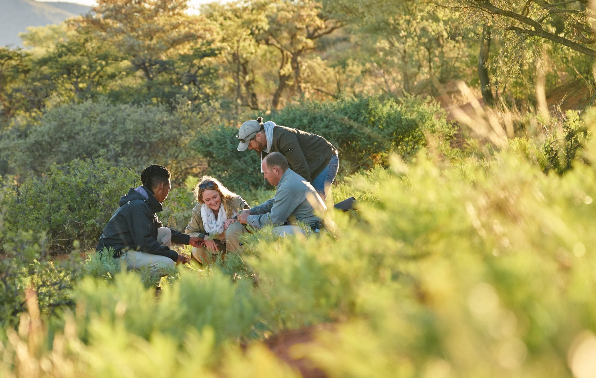 Tswalu conservation research