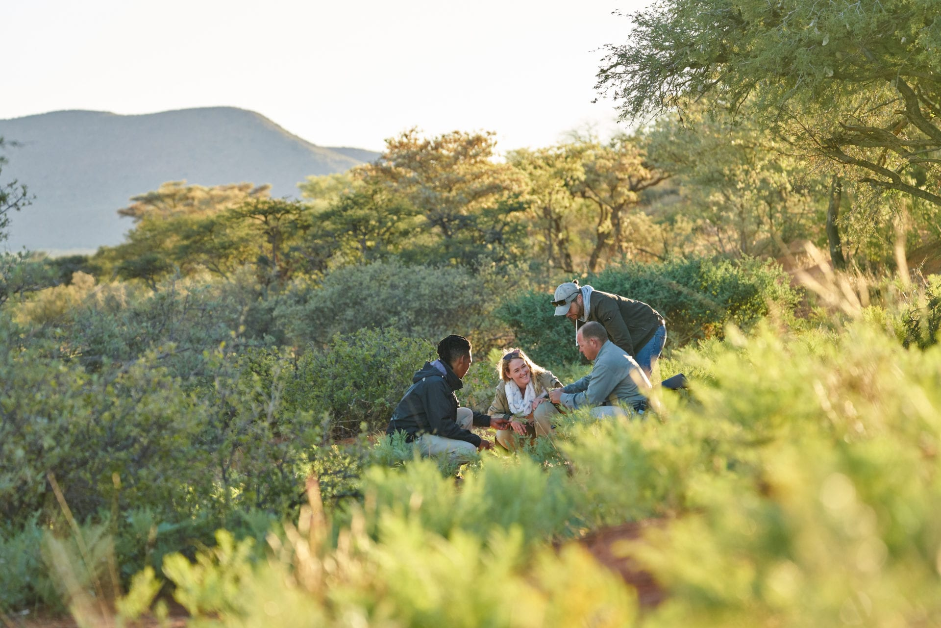 Ecological Research. Conservation management