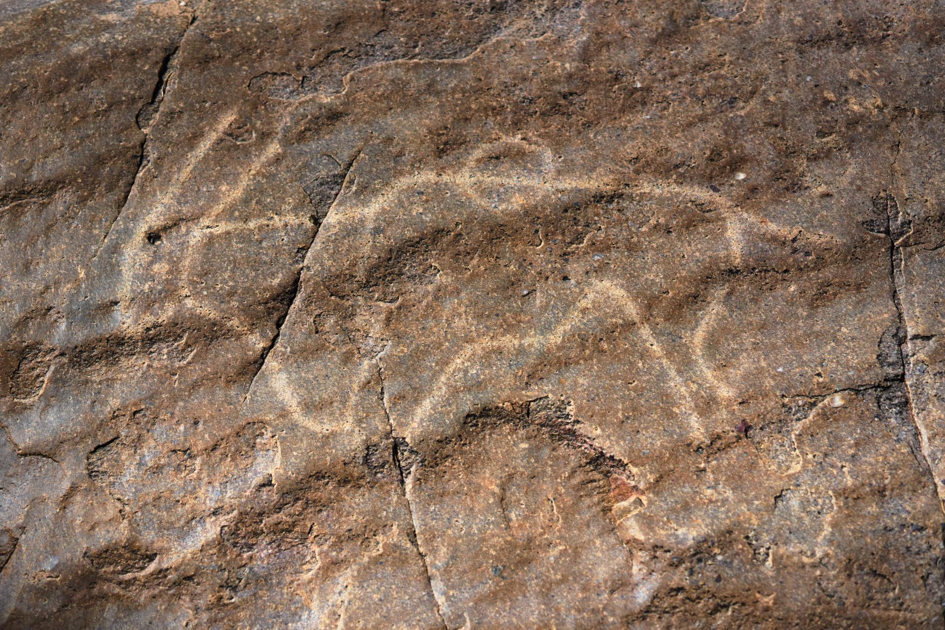 Tswalu Kalahari Conservation